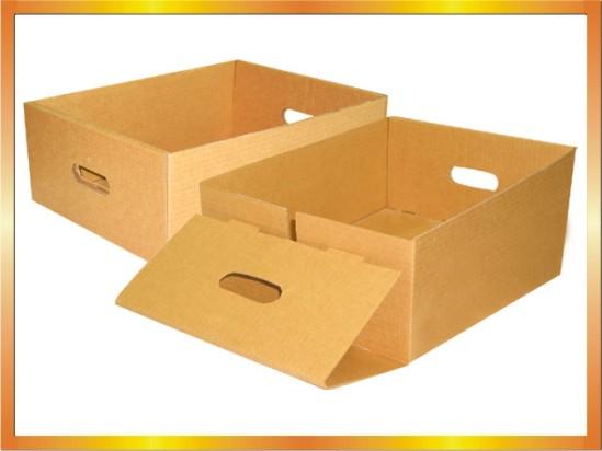 Địa chỉ Xưởng Thiết kế và in thùng Carton tại Hà Nội
